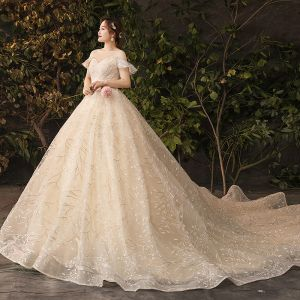 Sparkly Bling Bling Champagne Wedding Dresses 2019 A-Line / Princess Lace Tulle Floral Plus Size Embroidered Glitter Sequins Strapless Chapel Train Wedding