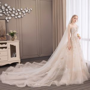 Modern / Fashion Champagne Wedding Dresses 2018 A-Line / Princess Appliques Lace Flower Pearl Sequins Bow Strapless Backless Sleeveless Cathedral Train Wedding