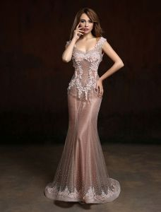 2016 Luxury V-neck Beading Rhinestones Applique Lace Flower Champagne Organza Long Evening Dress
