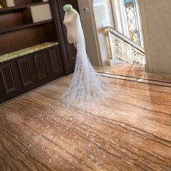 Romantisch Heerlijk Witte Bruidssluier 2020 Tule Hartvormig Appliques Chapel Train Huwelijk Accessoires