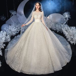 Illusion Ivory Bridal Wedding Dresses 2020 Ball Gown Scoop Neck Long Sleeve Glitter Tulle Royal Train Ruffle