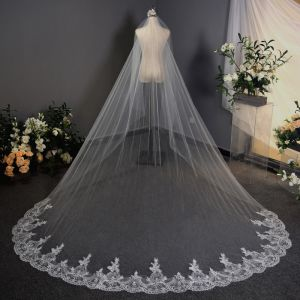 Affordable White 3D Lace Wedding Veils Chiffon Embroidered Chapel Train Lace Wedding Accessories 2019