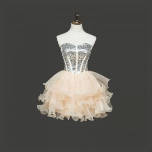 Chic / Beautiful Champagne Cocktail Dresses 2017 A-Line / Princess Tulle Backless Beading Rhinestone Cocktail Party Formal Dresses