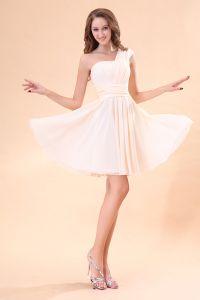 Perfecte Roze Mouwloos Een Schouder Bruidsmeisjes Jurken Voor Bruiloft