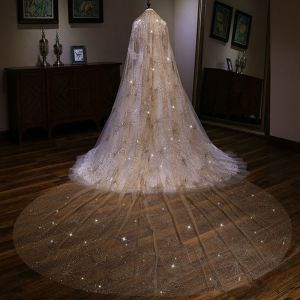 Sparkly Bling Bling Champagne Cathedral Train Wedding Veils Tulle Beading Sequins Wedding 2018