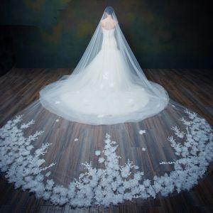 Chic / Belle Blanche 2017 Mariage Tulle Brodé Voile De Mariée