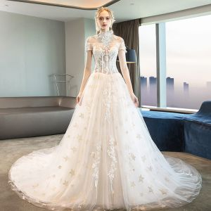 Modern / Fashion Ivory Corset Wedding Dresses 2018 A-Line / Princess Appliques Lace Star High Neck Short Sleeve Cathedral Train