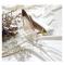 Moderne / Mode Blanche Mariage Demoiselle D'honneur Escarpins 2020 Cuir Perle 8 cm Talons Aiguilles À Bout Pointu Chaussure De Mariée