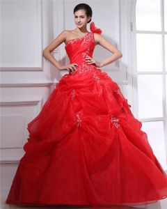 Ball Gown Organza Beading Applique One Shoulder Floor Length Quinceanera Prom Dresses
