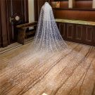 Chic / Beautiful White Royal Train Wedding 2018 Tulle Appliques Star Starry Sky Wedding Veils