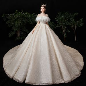 Best Champagne Wedding Dresses With Shawl 2020 Ball Gown Strapless Sleeveless Backless Checked Glitter Tulle Beading Feather Royal Train Ruffle
