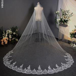 Erschwinglich Weiß 3D Spitze Brautschleier Chiffon Stickerei Kapelle-Schleppe Spitze Hochzeit Brautaccessoires 2019