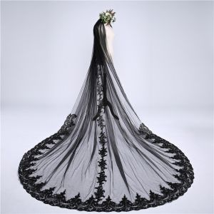 Baroque Black Cathedral Train Wedding Tulle Lace-up Appliques Wedding Veils 2018