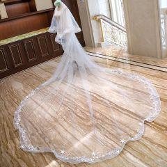 Mooie / Prachtige Witte Bruidssluier 2020 Kanten Tule Appliques Chapel Train Huwelijk Accessoires